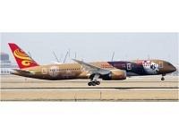 """Boeing 787-9 Hainan Airlines """"Kung Fu Panda 4"""" B-1343"""