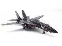 "F-14A USNavy VX-4 ""Black Bunny"""